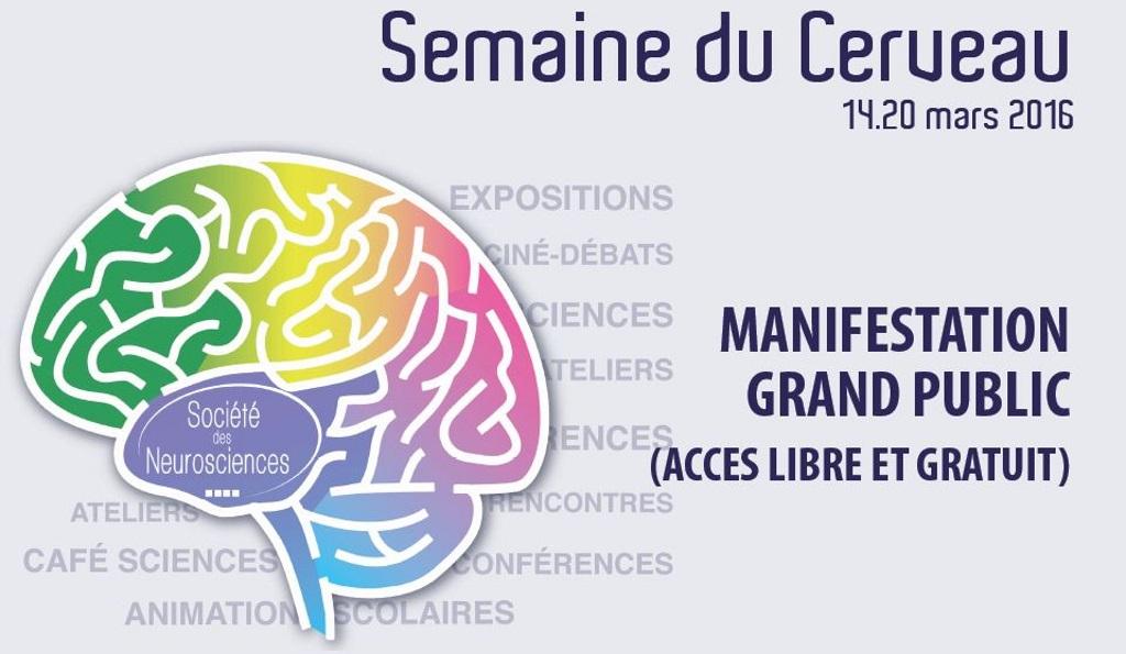 17ème édition de la Semaine du cerveau