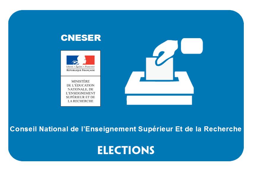 Élections 2019 au CNESER : les représentants du personnel seront élus le 13 juin prochain